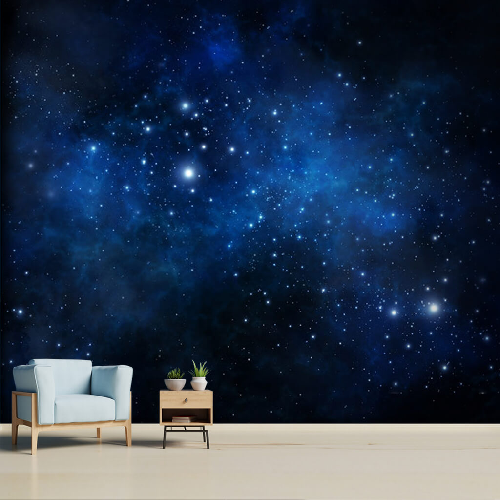 Night sky with stars milky way and galaxy custom wall mural