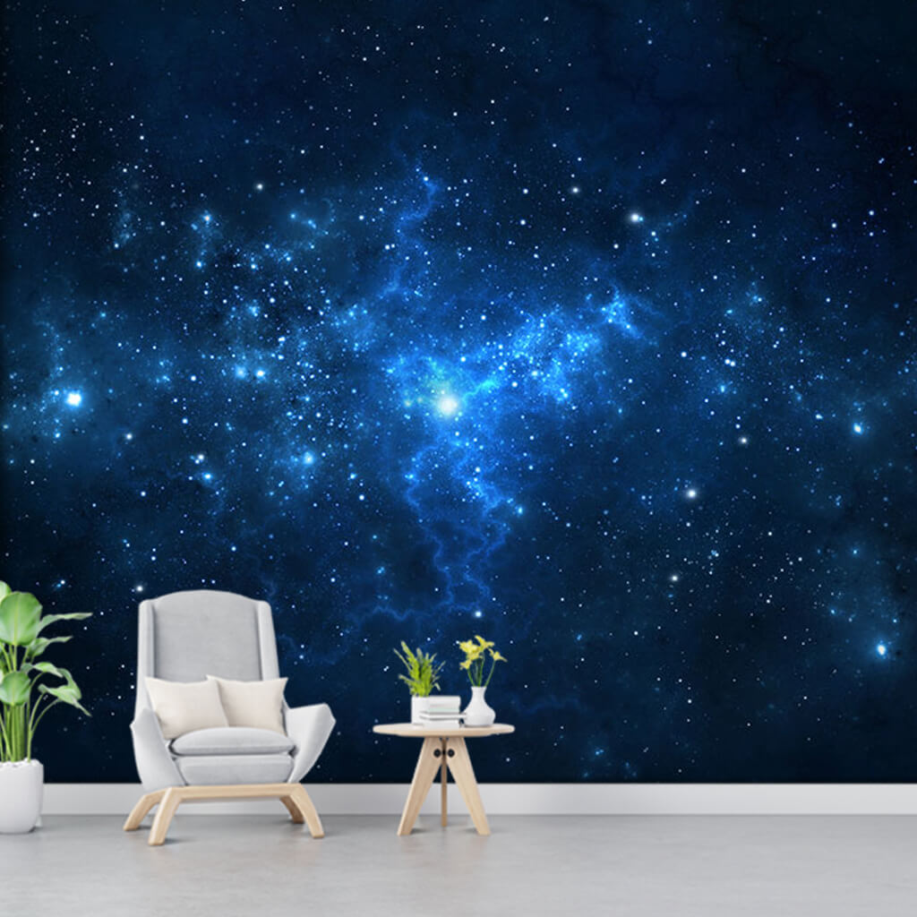 Night sky with milky way stars and galaxy custom wall mural
