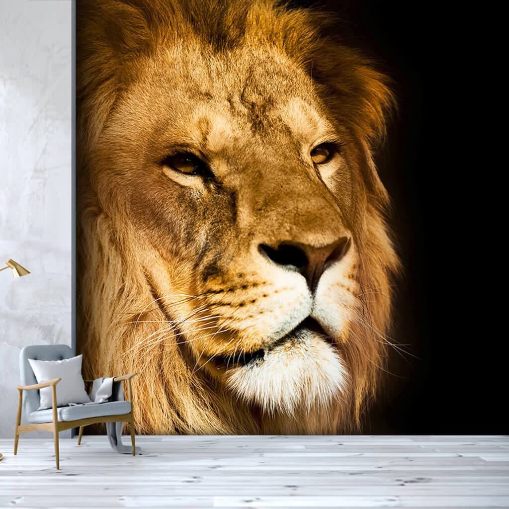 Face of a king male lion custom scalable wall mural