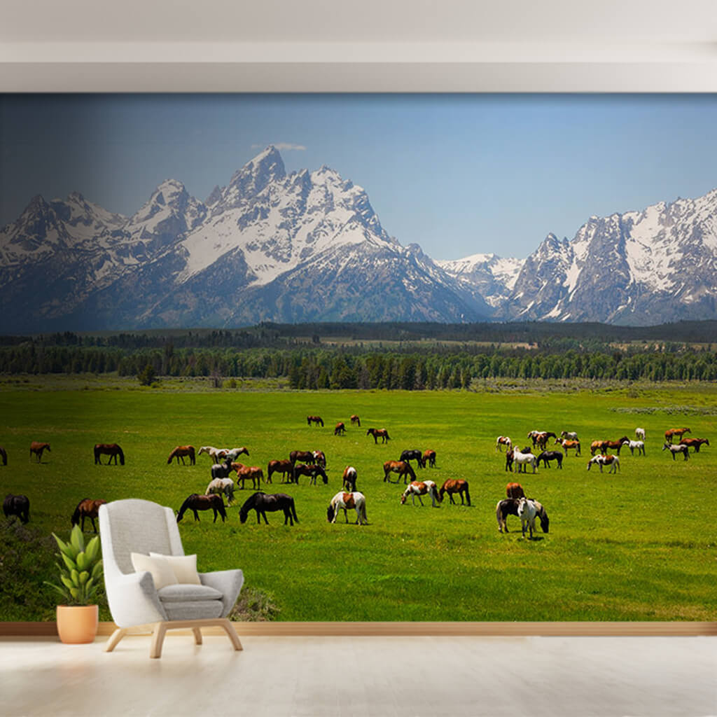 Horses grazing at the foot of mountains Wyoming wall mural