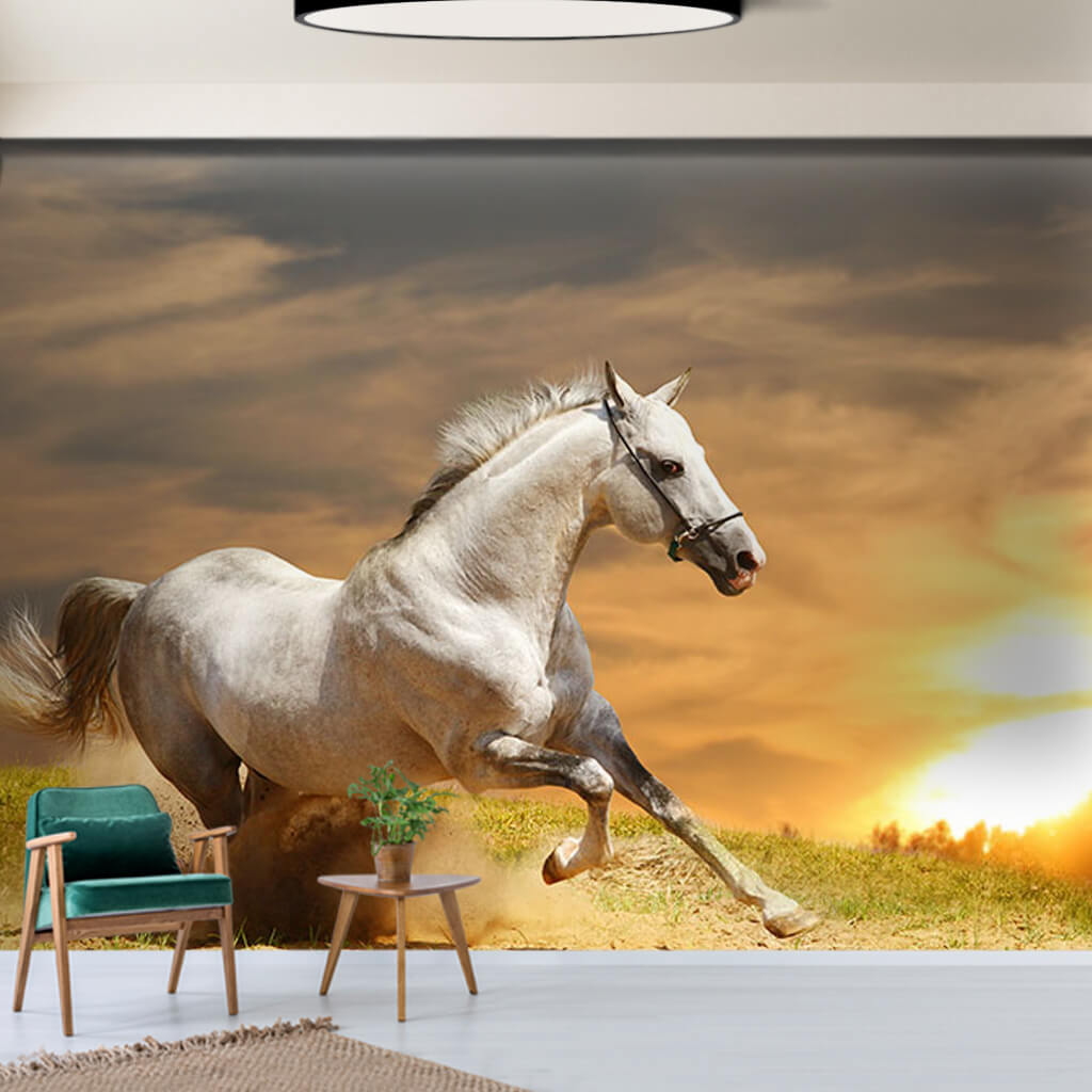 Galloping white horse scalable custom wall mural