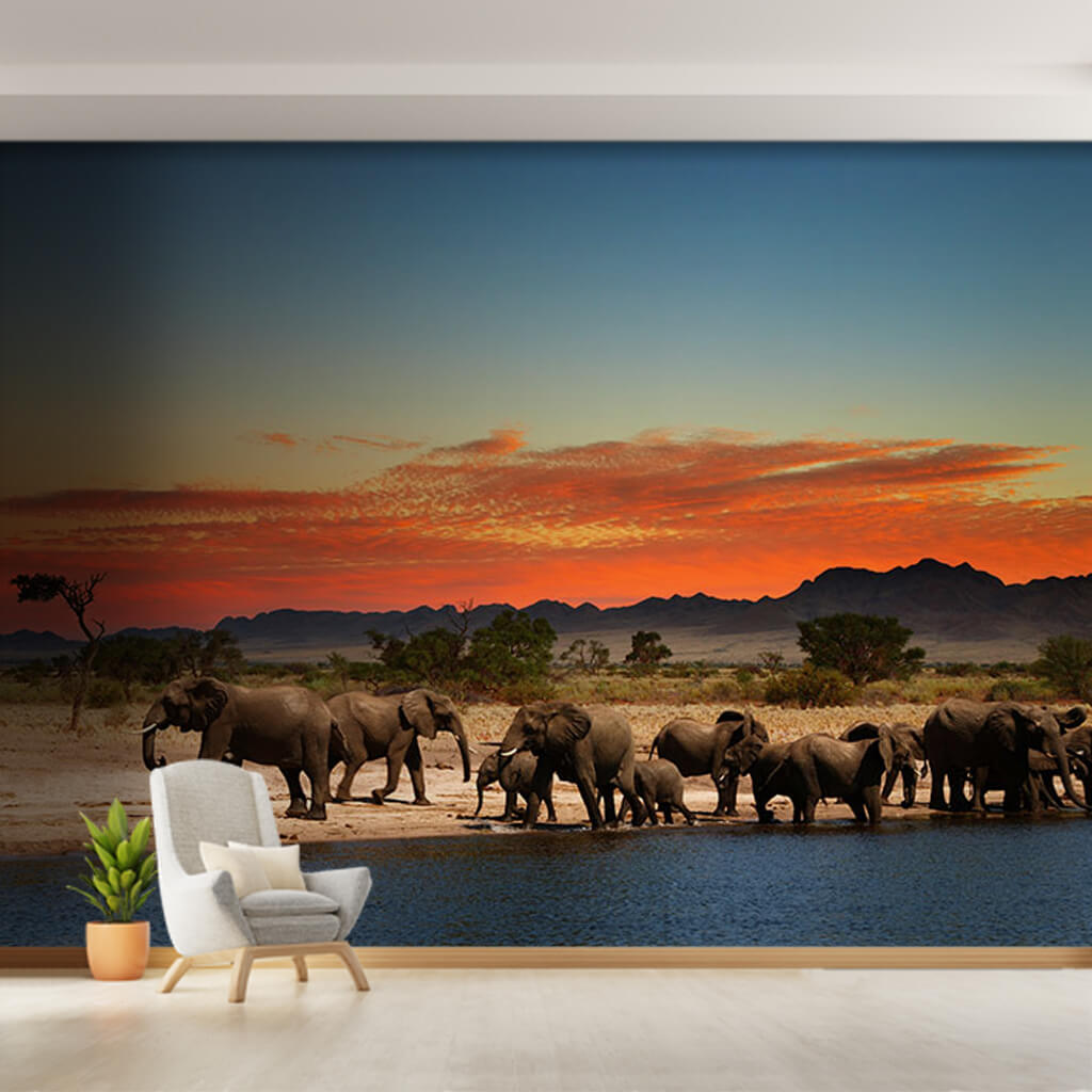 Elephant herd by the water wild African animals wall mural