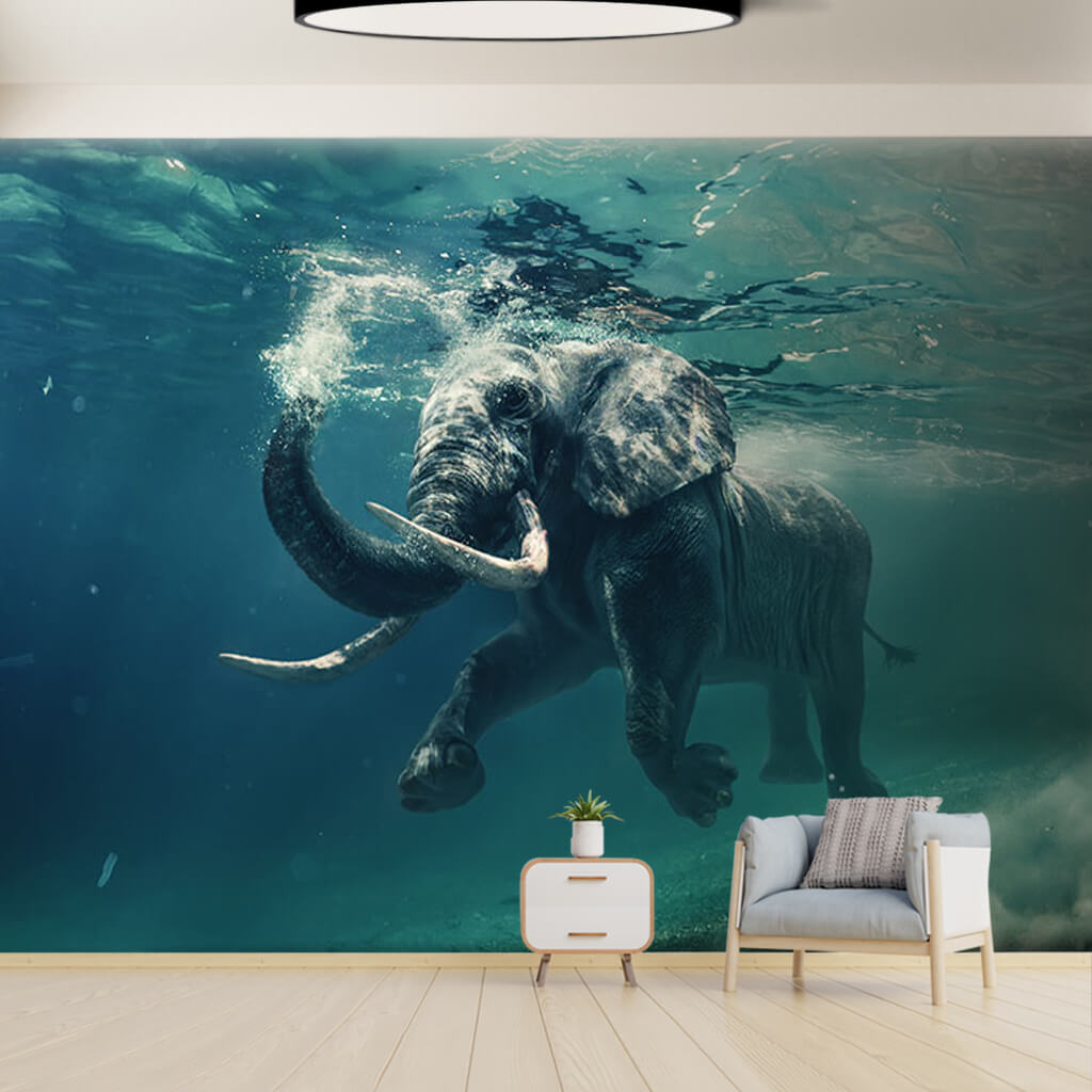Floating elephant underwater photo custom wall mural