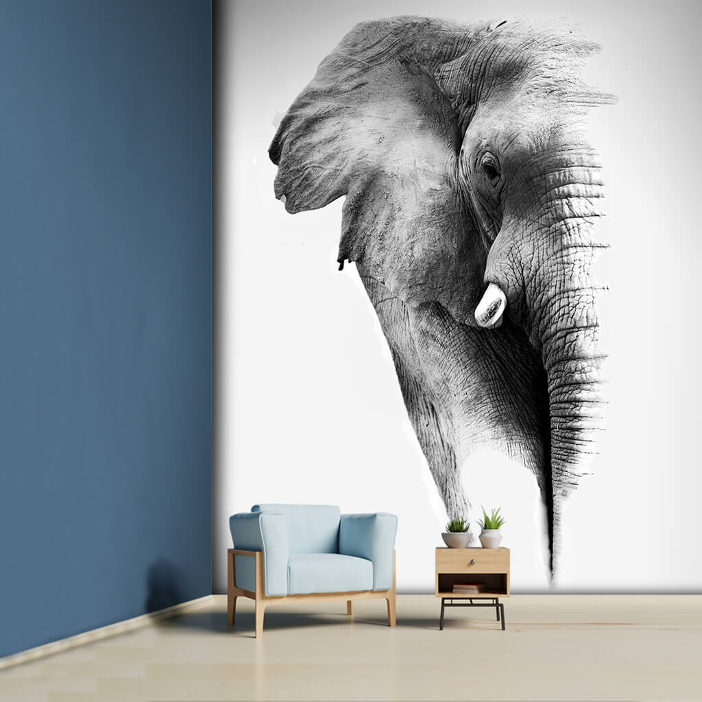 Half of an African elephant image 3D black white wall mural