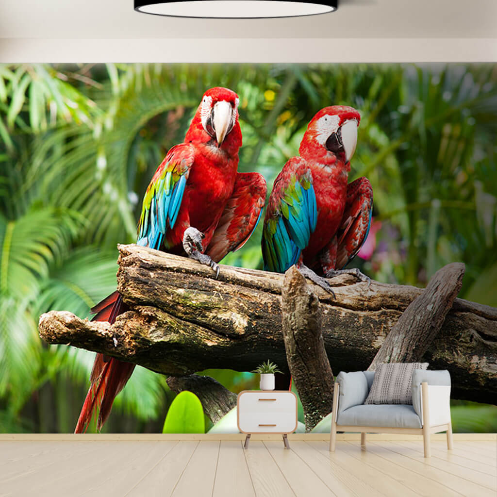 2 colorful parrots and tropical forest custom wall mural