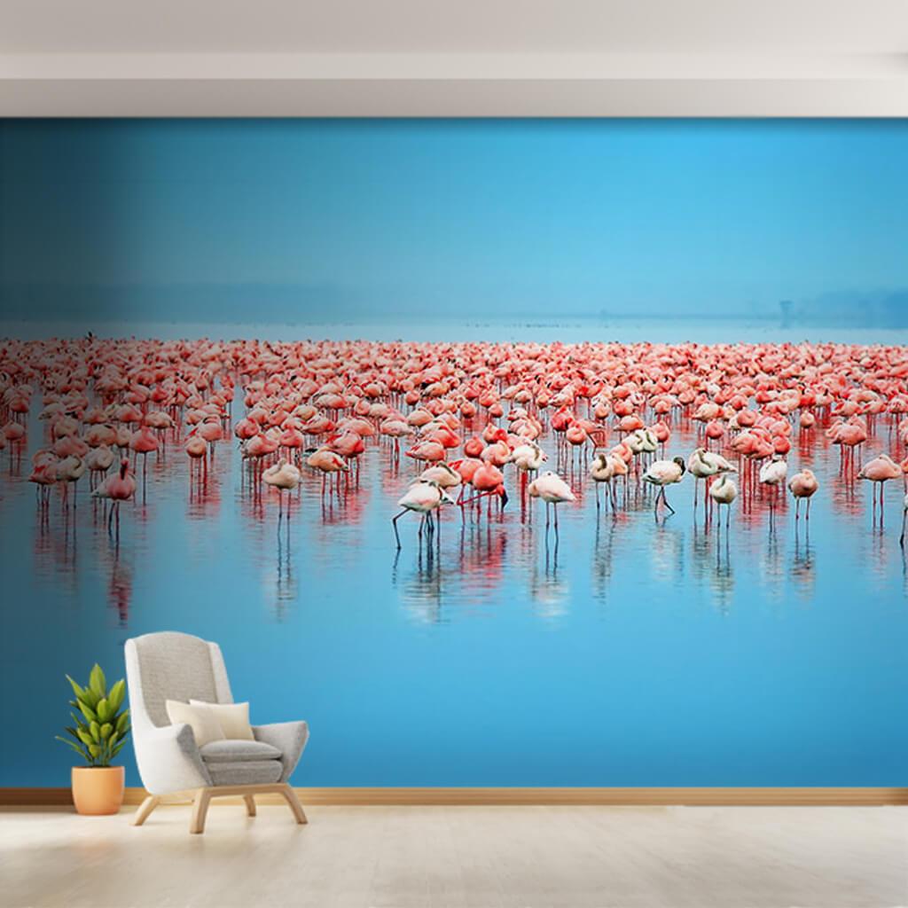 Mavi gölde pembe Flamingo sürüsü duvar kağıdı