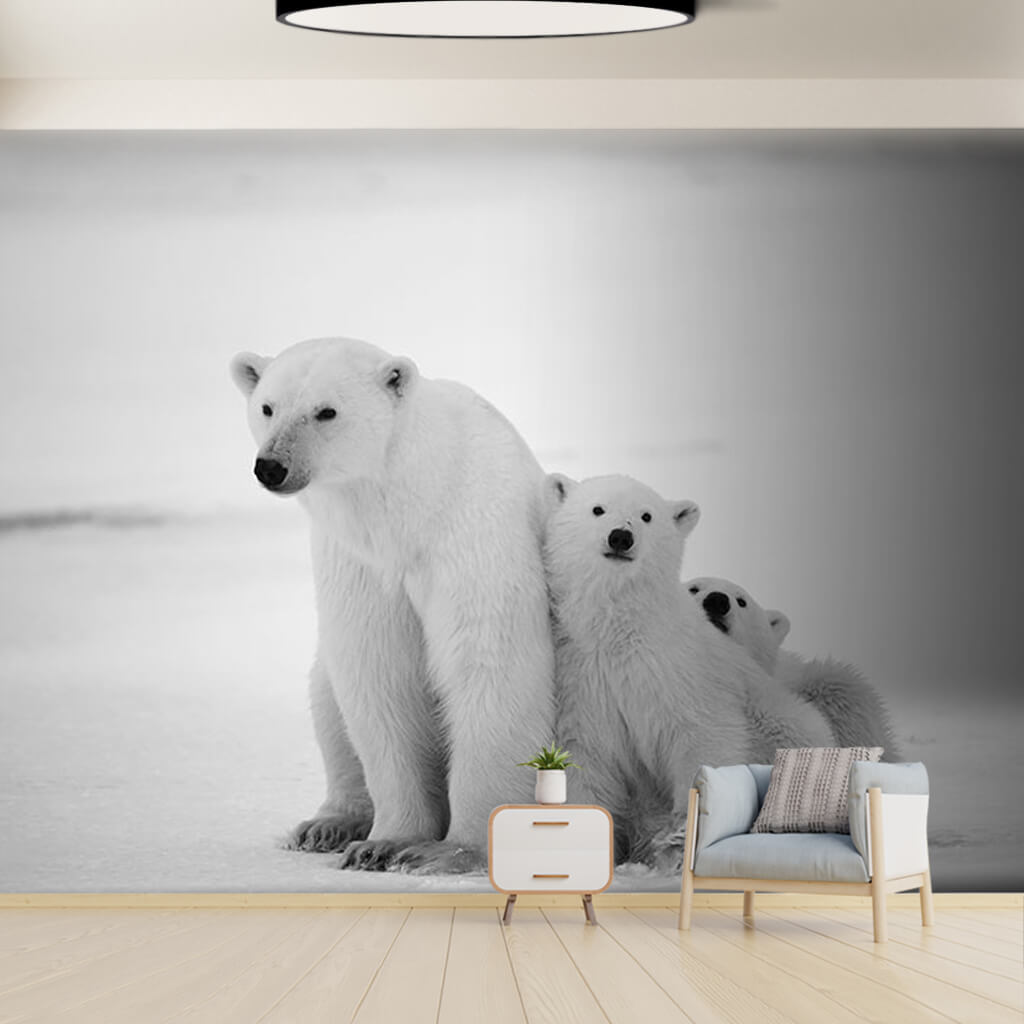 Black and white mother polar bear and 2 cubs wall mural