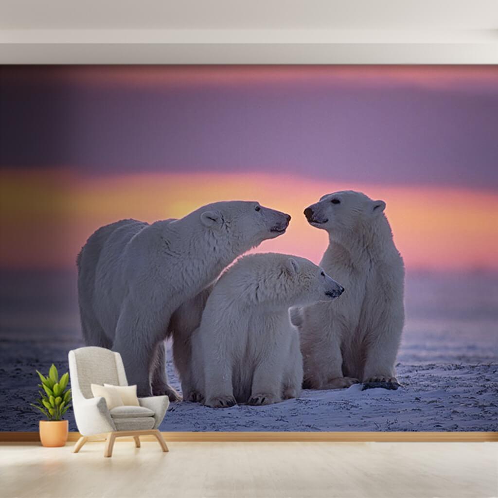 Beyaz kutup ayıları ve kuzey ışıkları duvar kağıdı