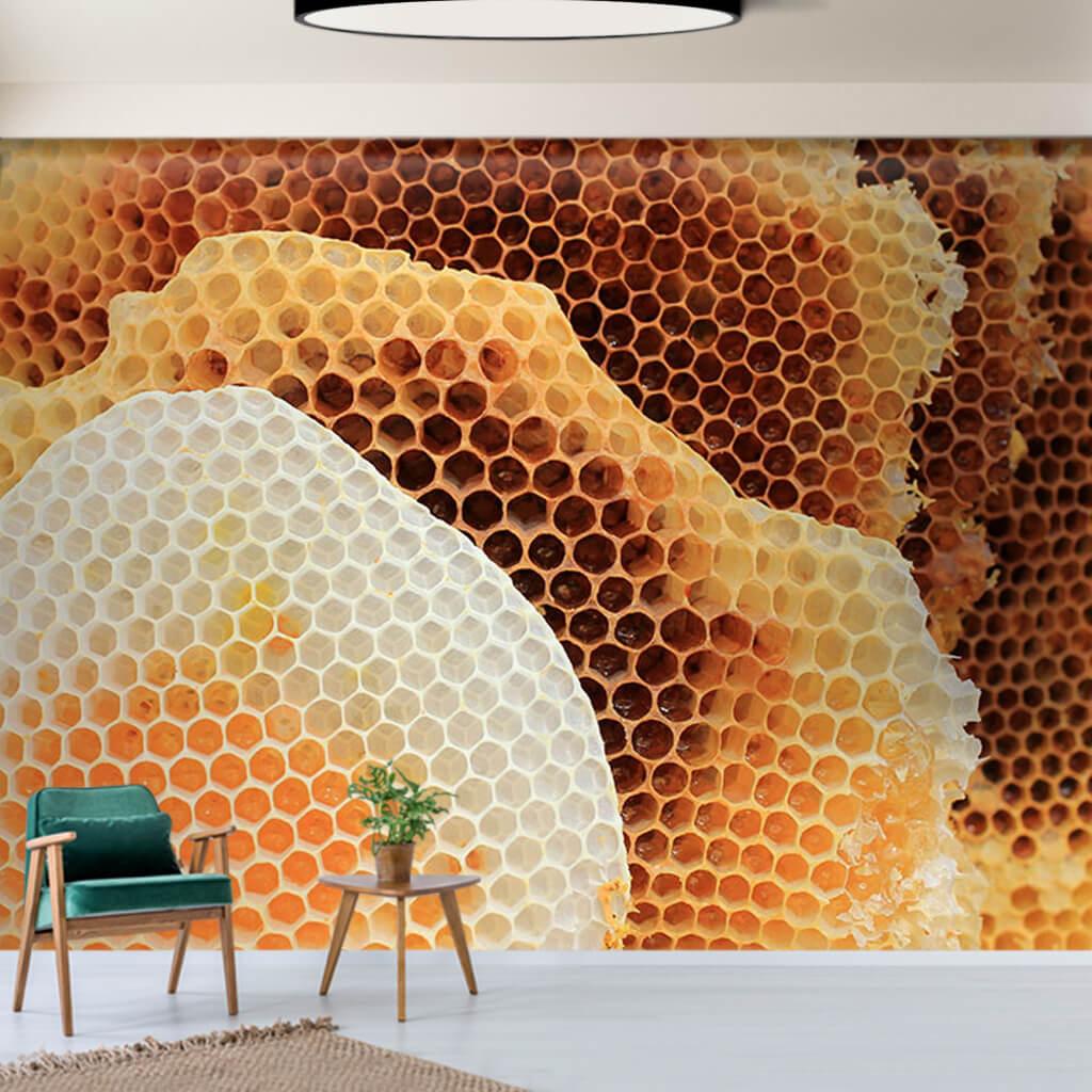 Doğal petek balı ve dokusu 3D duvar kağıdı