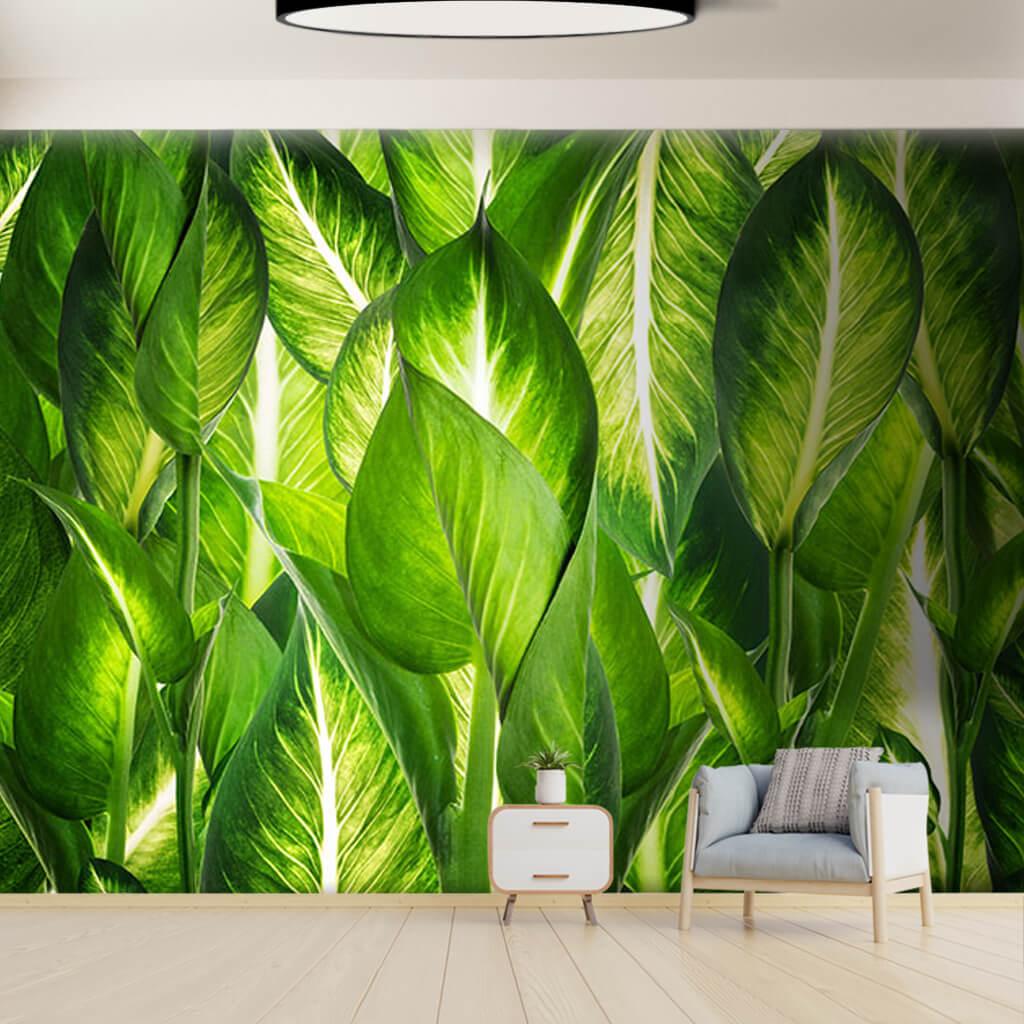 Doğal yeşil yapraklar soft 3D duvar kağıdı