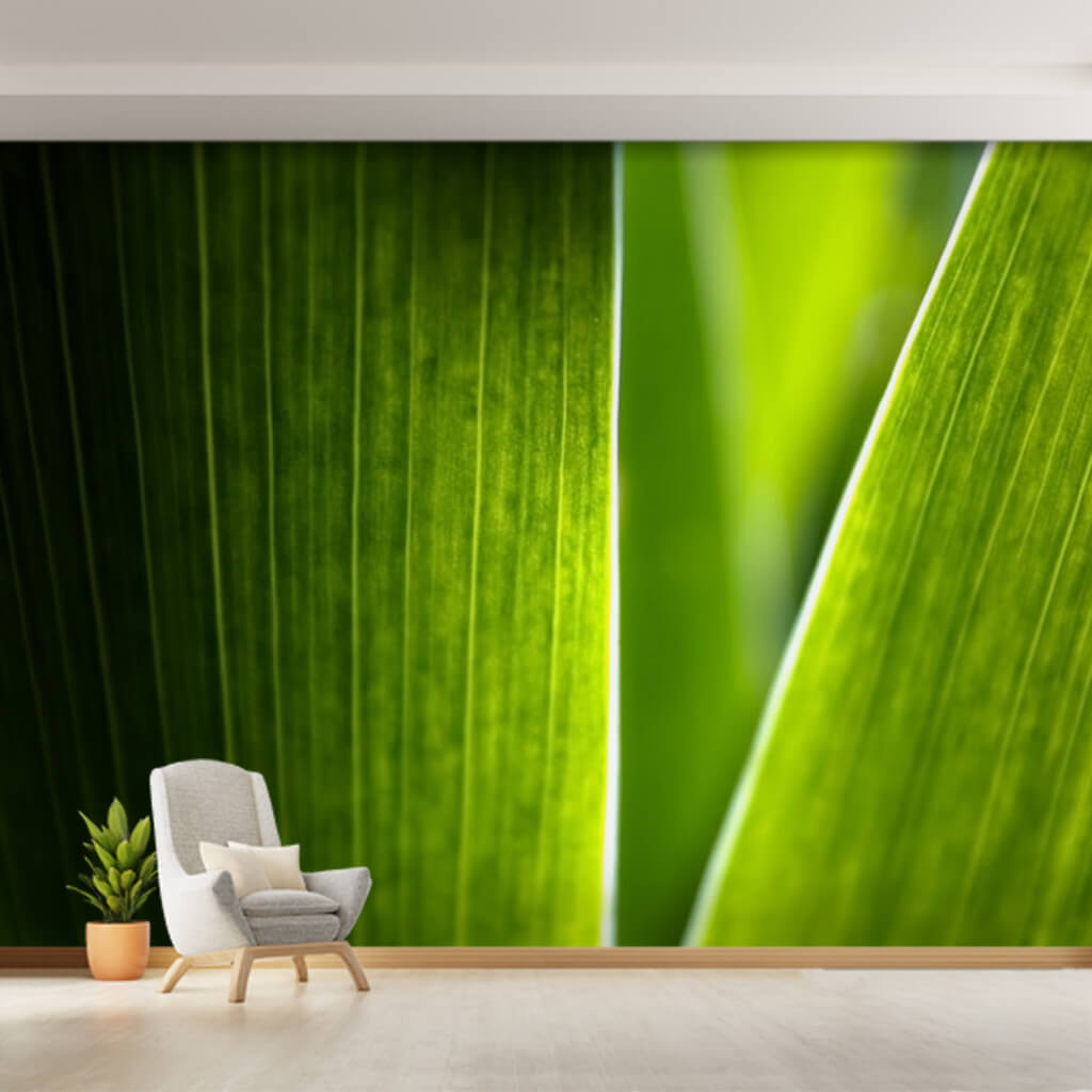 Natural fresh leaf close up sectional 3D custom wall mural