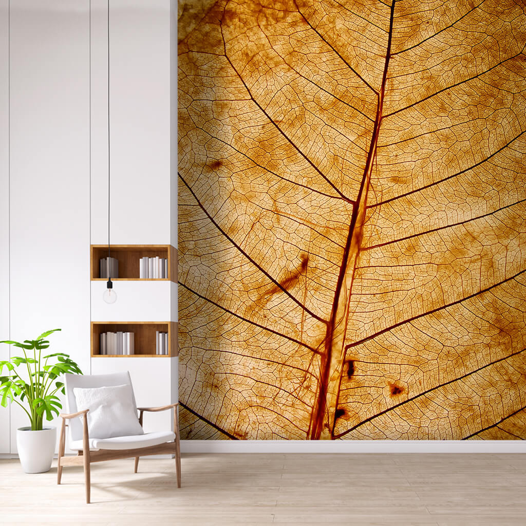 Cross section of natural dried yellow leaf 3D wall mural