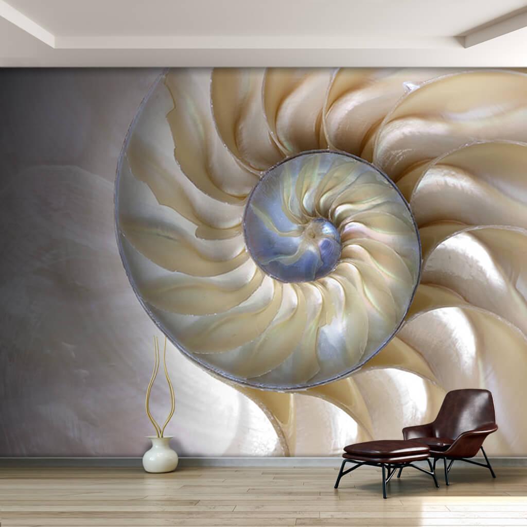 Sedef renkli deniz kabuğu duvar kağıdı