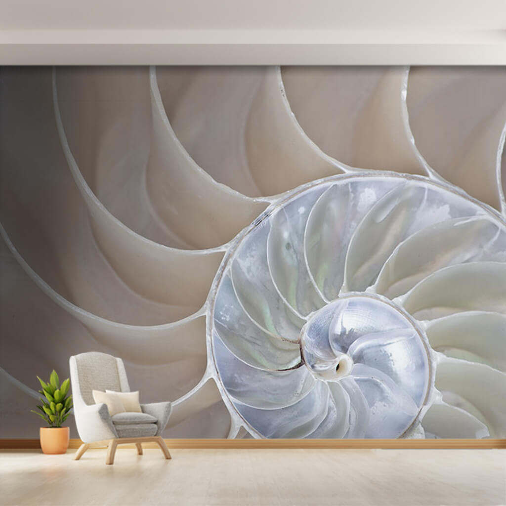 Golden ratio pearl color sea shell section custom wall mural