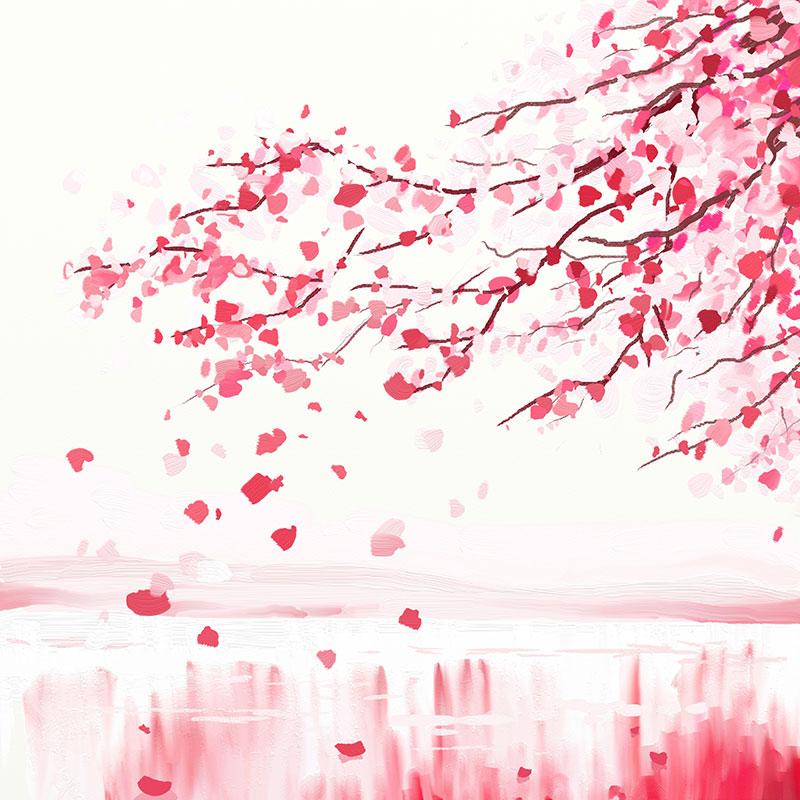 Dokulen Yapraklariyla Kiraz Agaci Sakura Duvar Kagidi