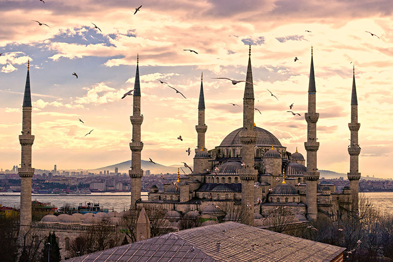 Sultan Ahmet Mosques 6 Minarets And Birds Istanbul Wall Mural
