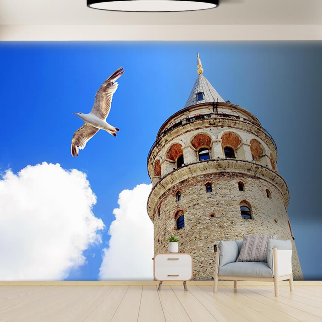 Aşağıdan tarihi Galata Kulesi ve martı İstanbul duvar kağıdı