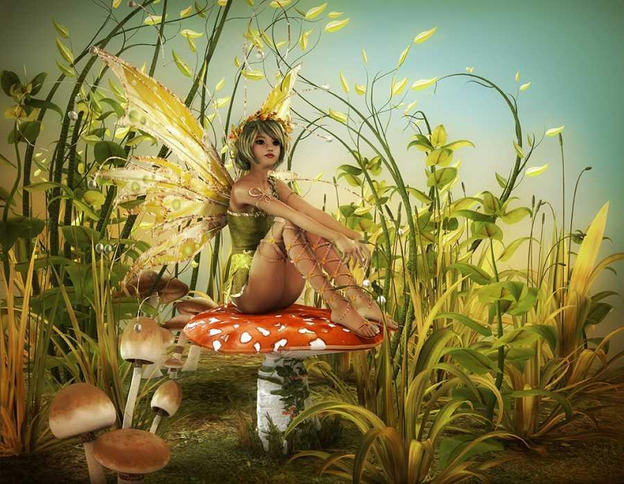 Fairy Tinkerbell on mushroom kids room wall mural
