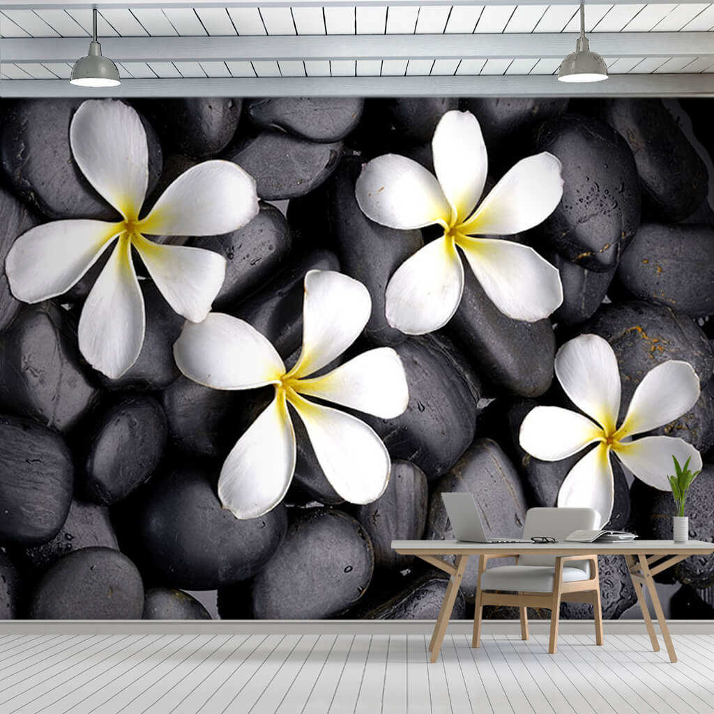 Black stones and honeysuckle jasmine frangipani wall mural