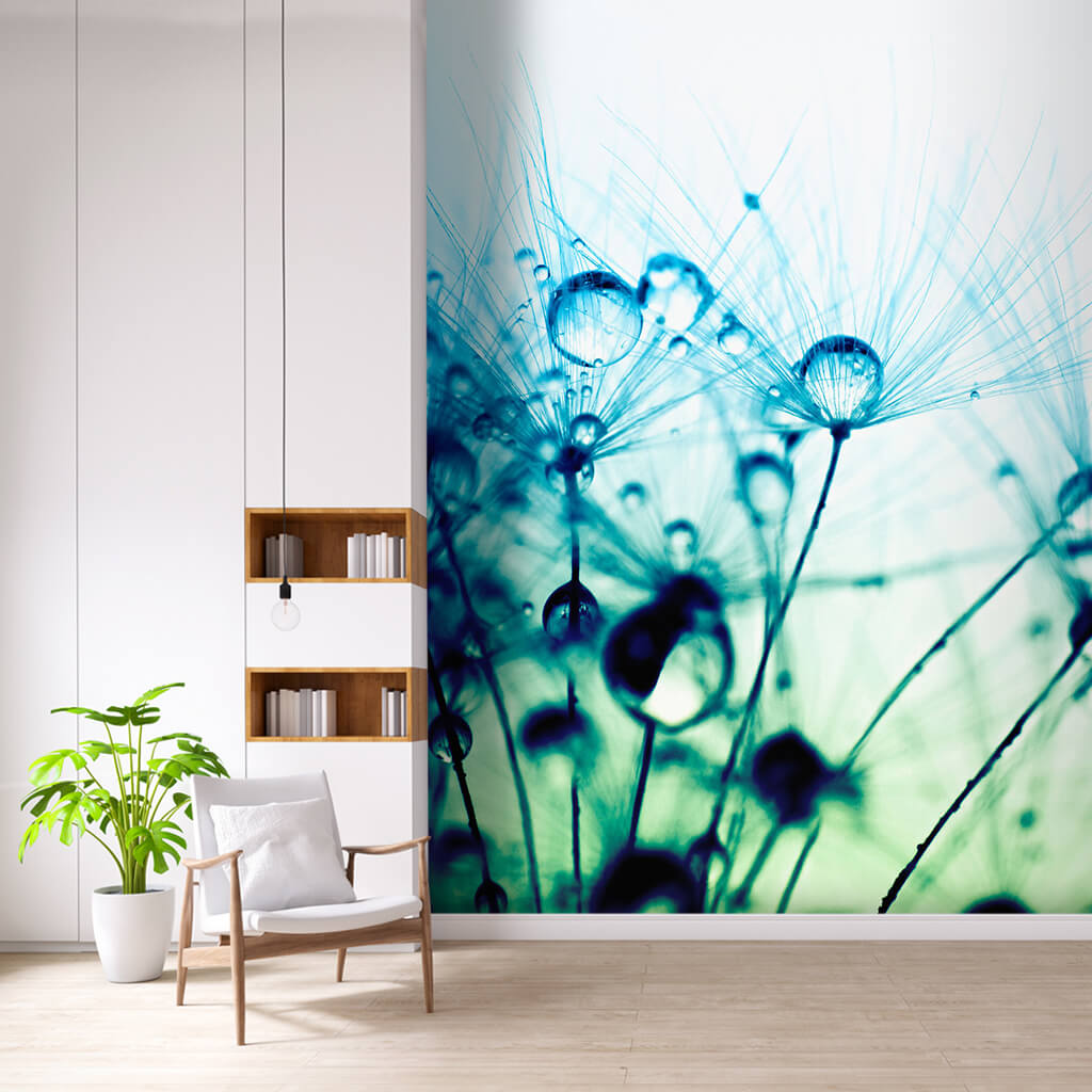 Dandelion flowers and dew drops custom scalable wall mural