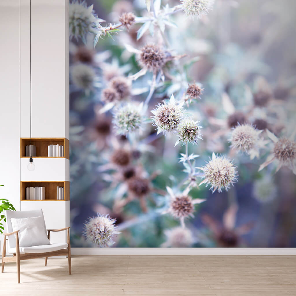 Blue lilac chrysanthemum flower custom scalable wall mural