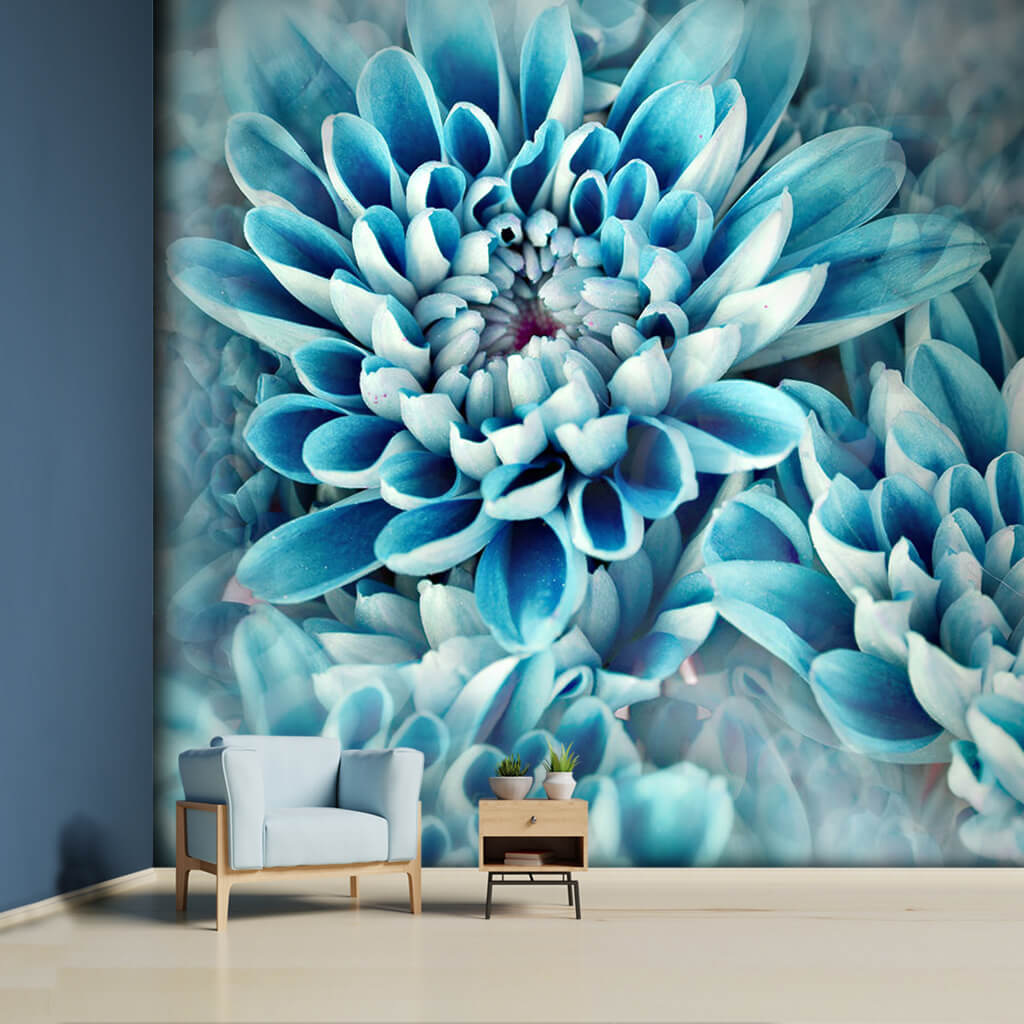 Blue dahlia blooming in spring custom scalable wall mural