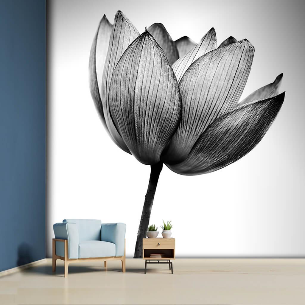 Black white peony single branch flower custom wall mural