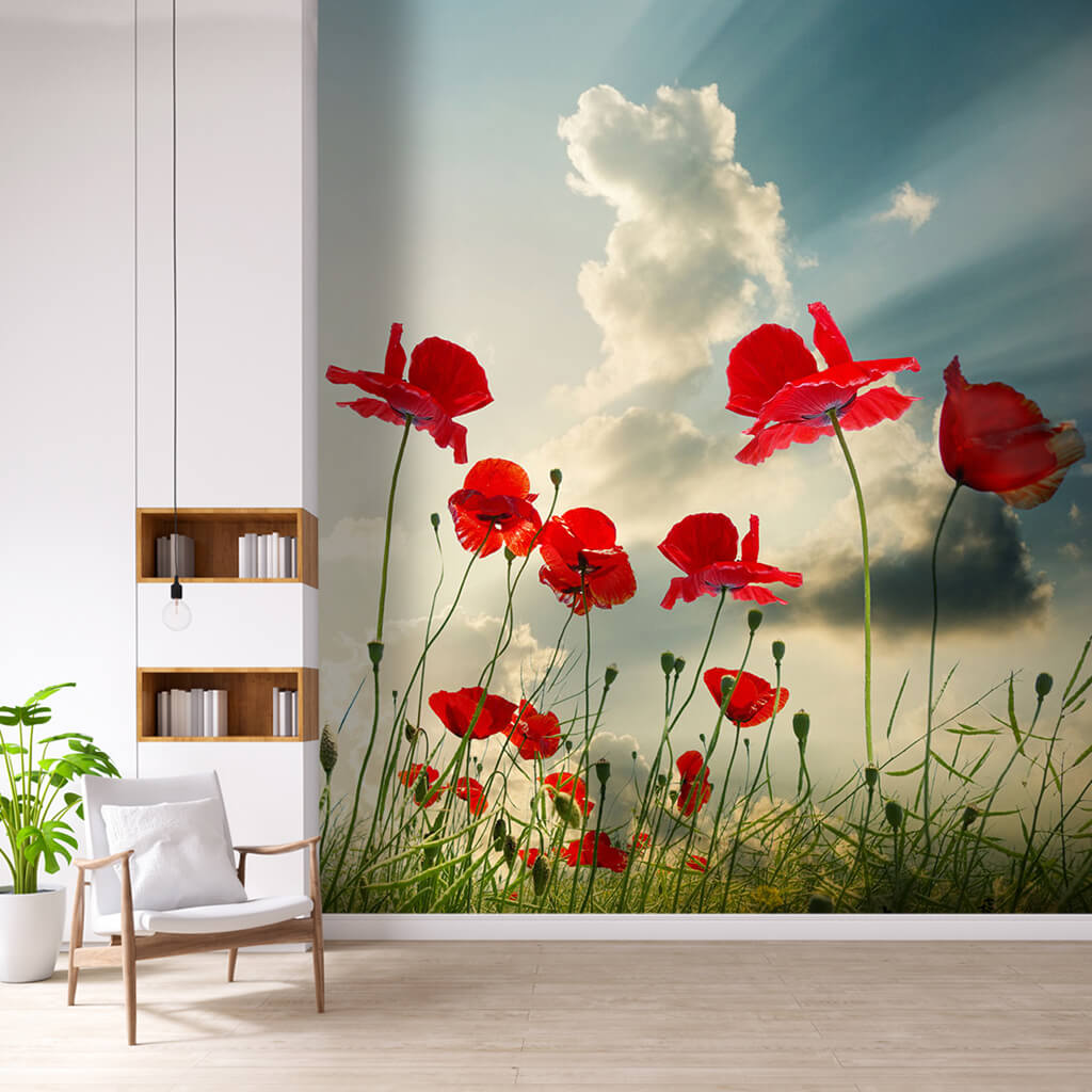Day lights leaking from clouds and poppy field wall mural