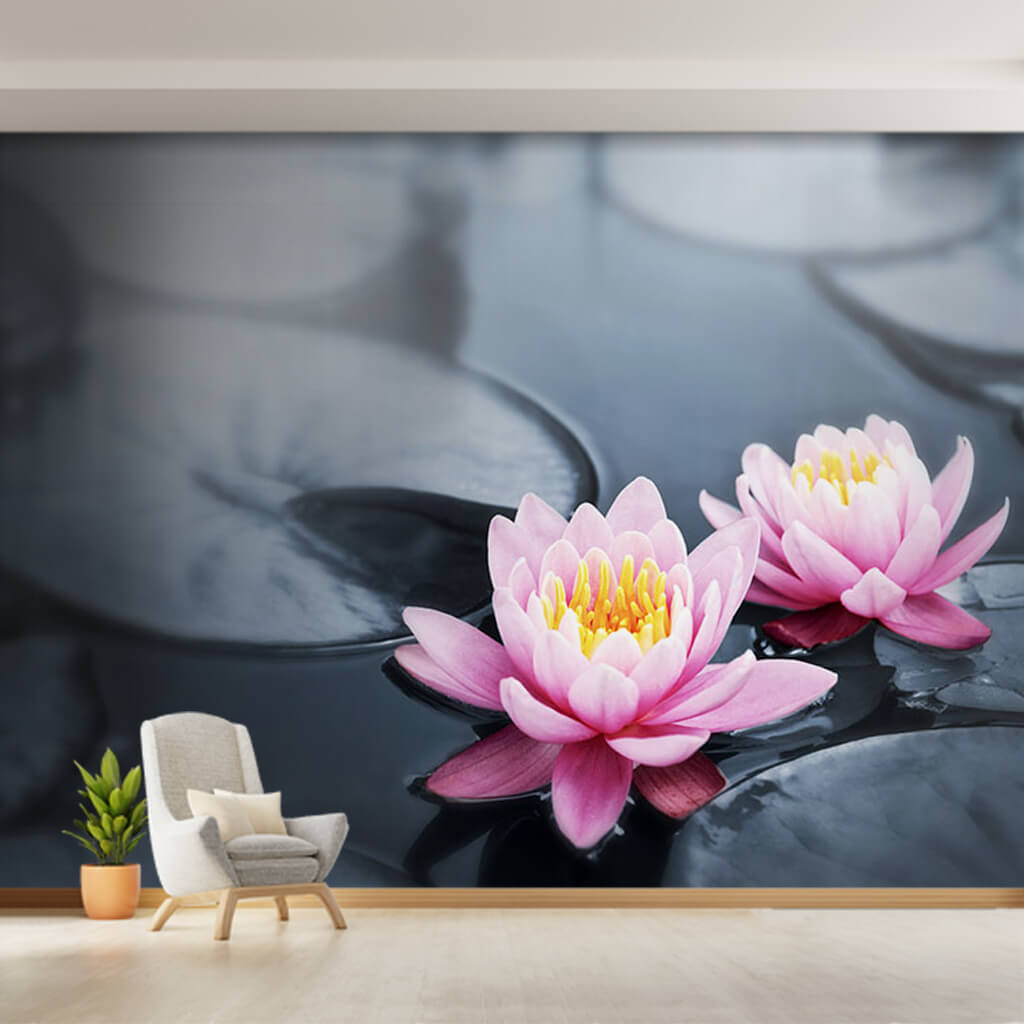 2 lotus flowers with pink petals in black lake wall mural