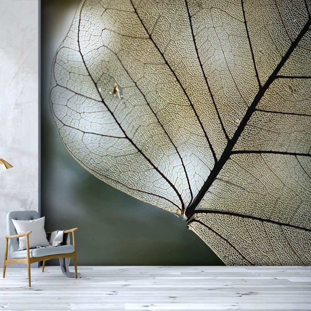 Detail of leaf veins section custom scalable wall mural
