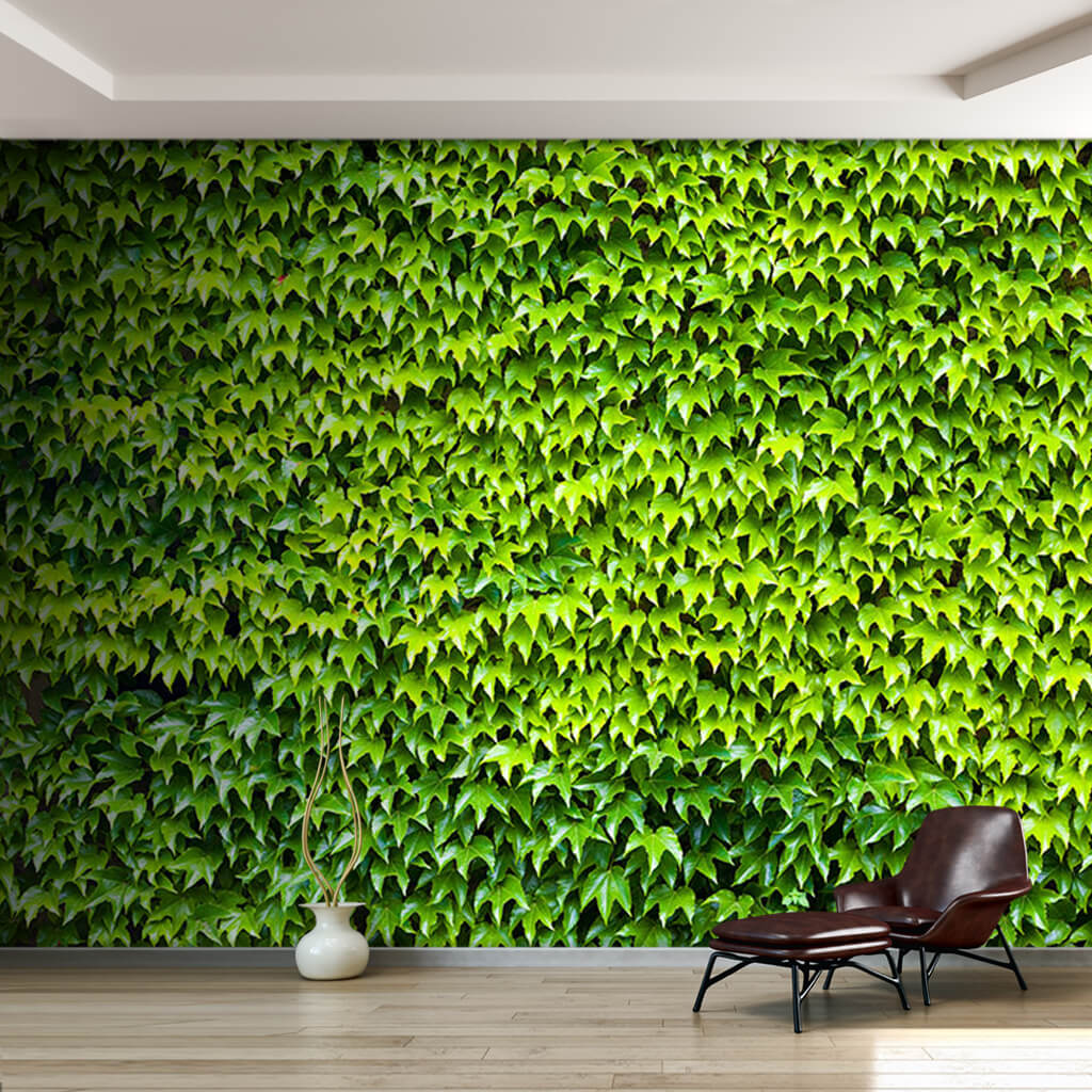 Cross section of green ivy leaves 3D custom wall mural