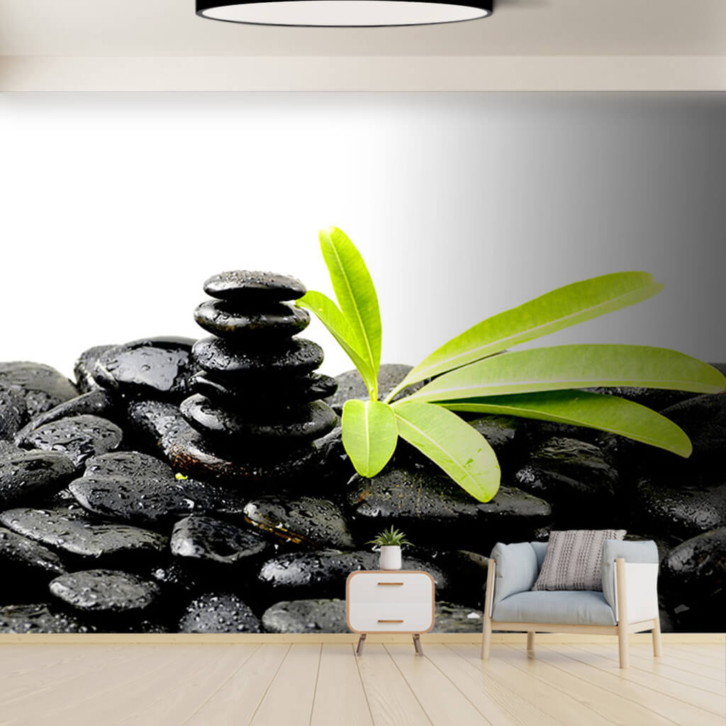 Black stones and green eucalyptus leaves health wall mural
