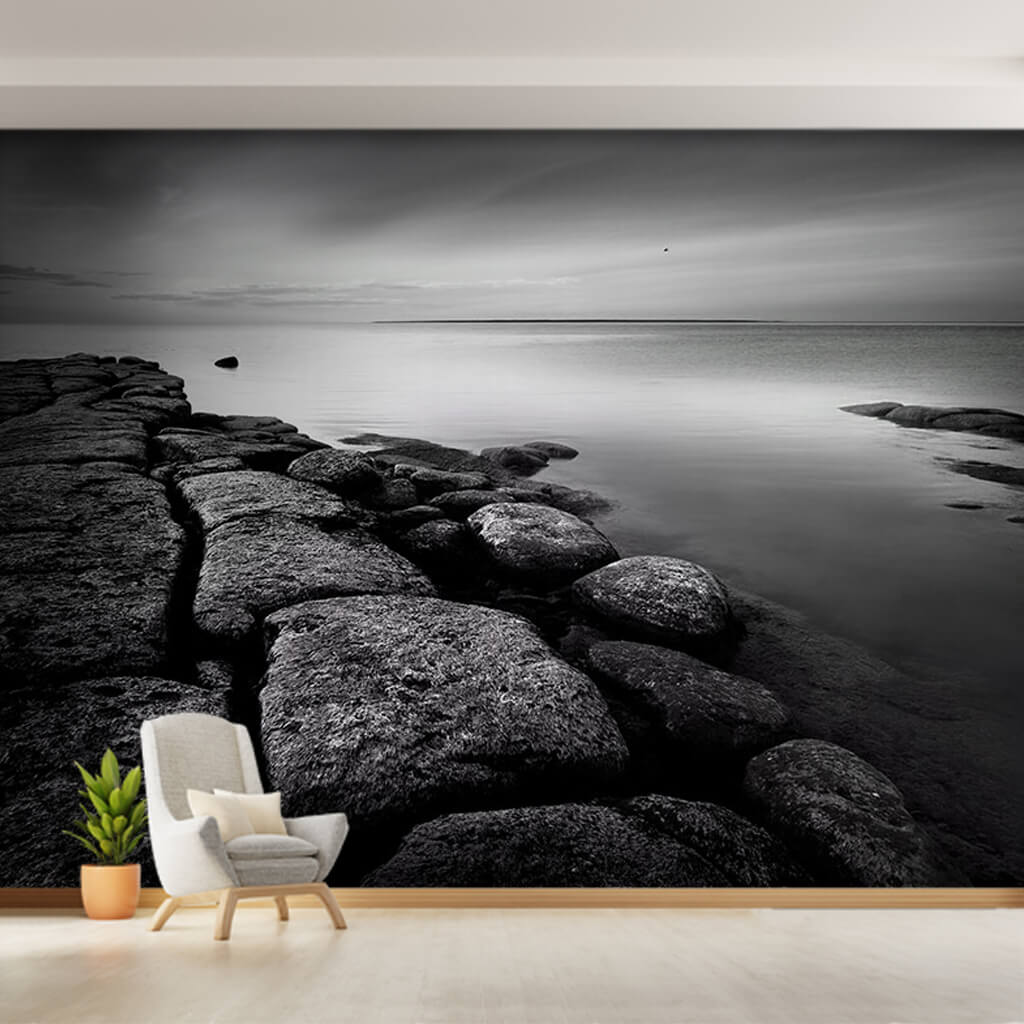 Black and white coast shore sea and cliffs wall mural