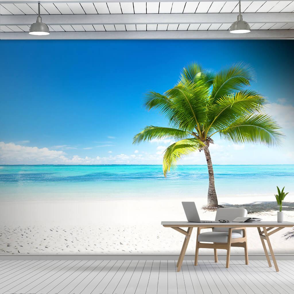 Beyaz kumsaldan turkuaz denize yalnız palmiye duvar kağıdı