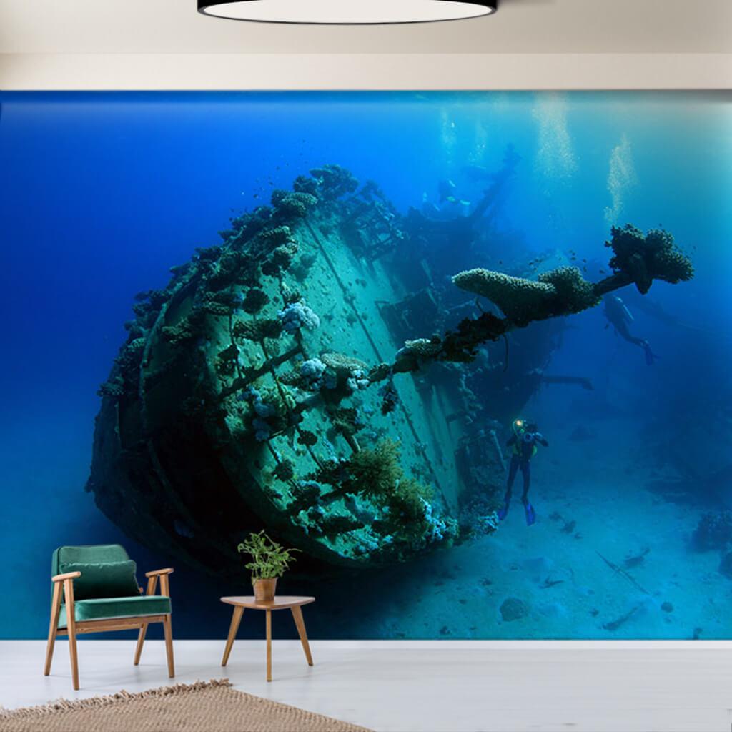 Deniz dibi gemi batığı ve dalgıç Baru Adası duvar kağıdı