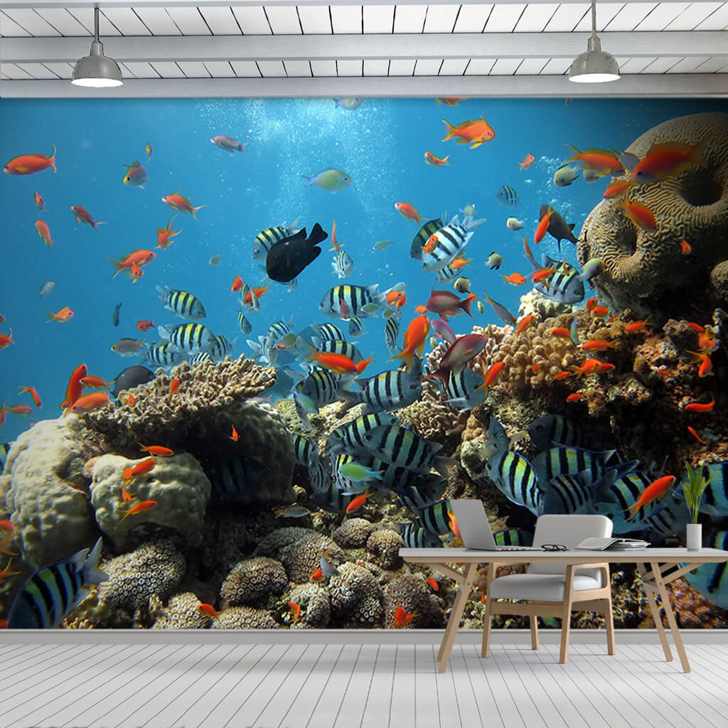 Colorful fishes and sea in the coral reef custom wall mural