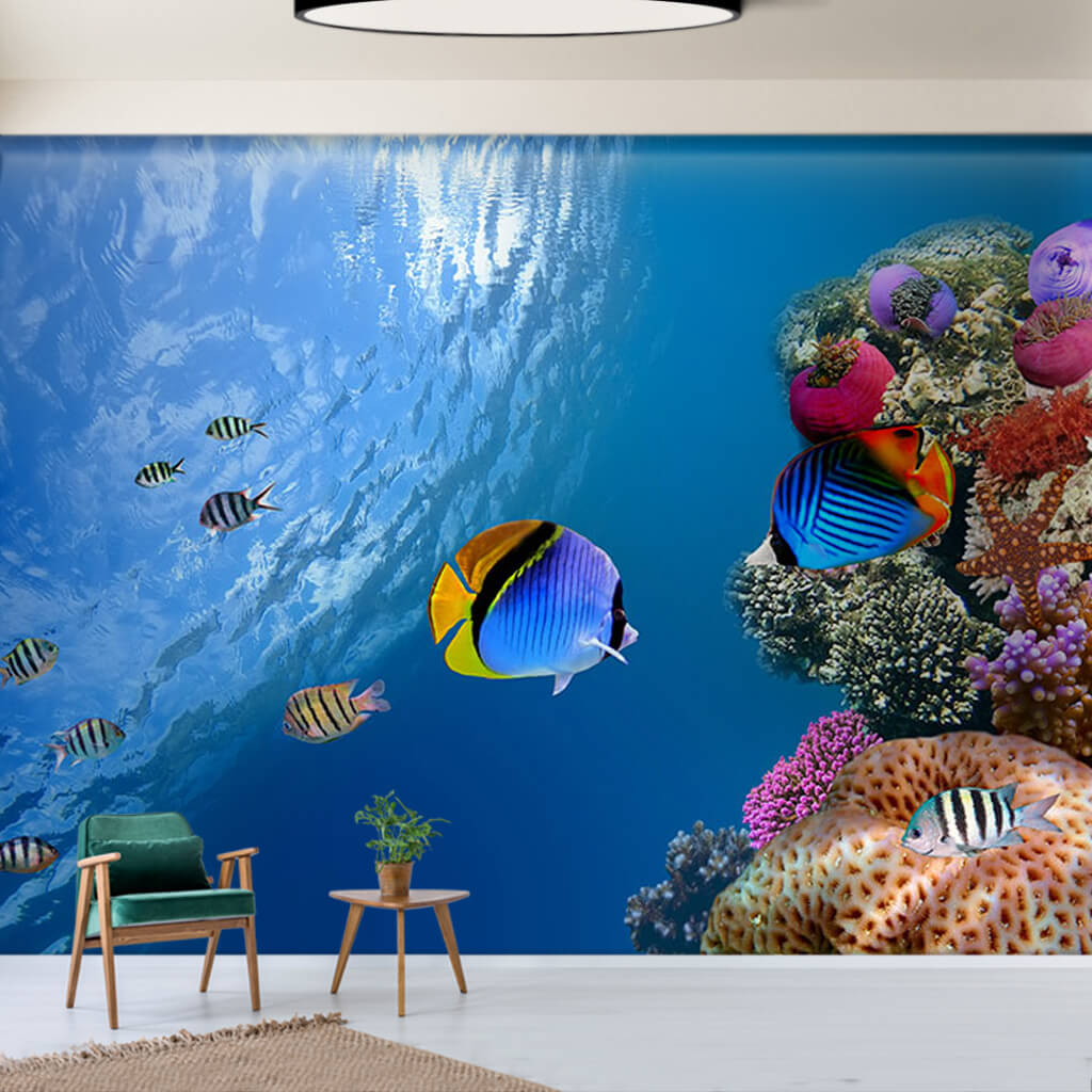 Colorful tropical fishes on the coral reef sea wall mural