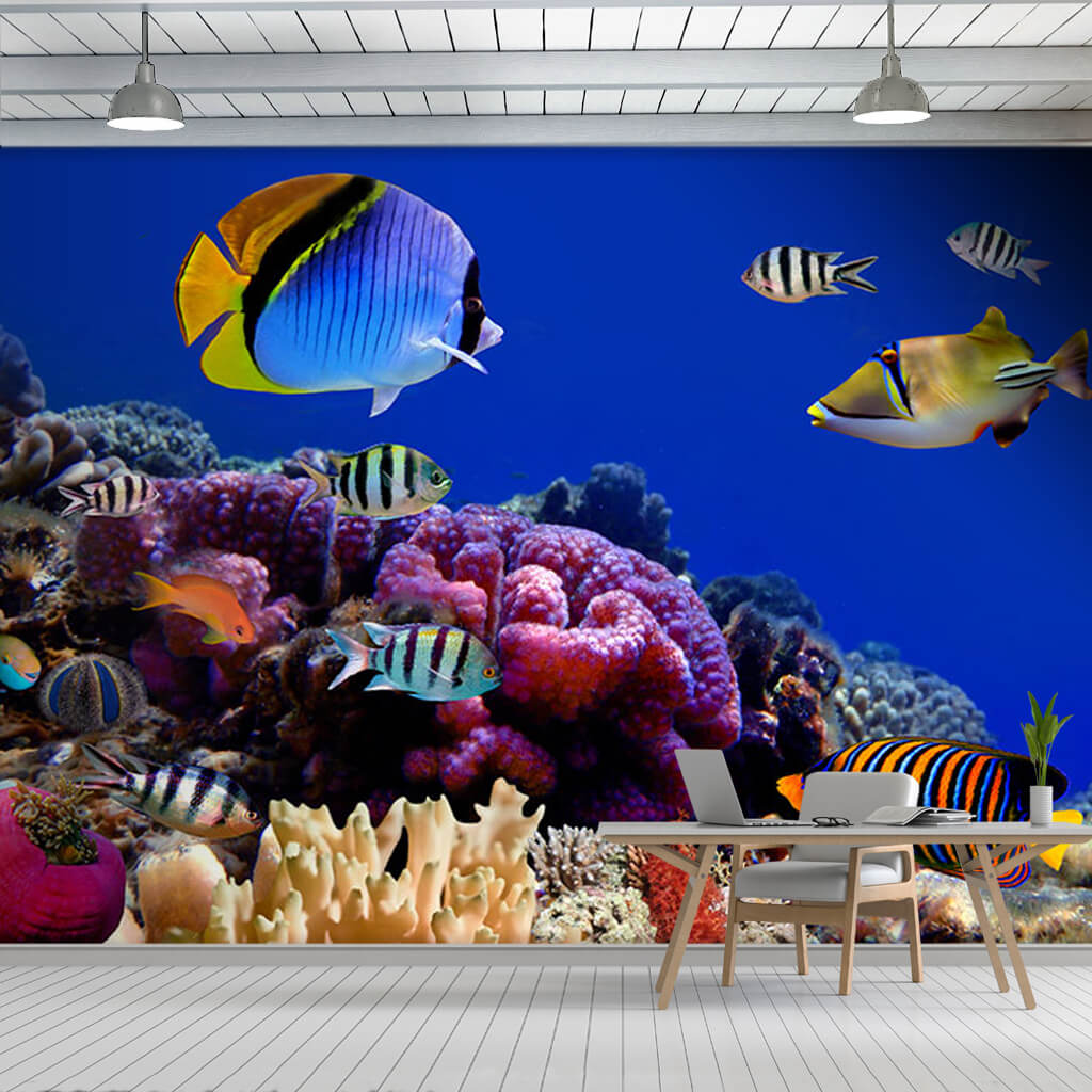 Custom wall mural of tropical fishes in colorful coral reef