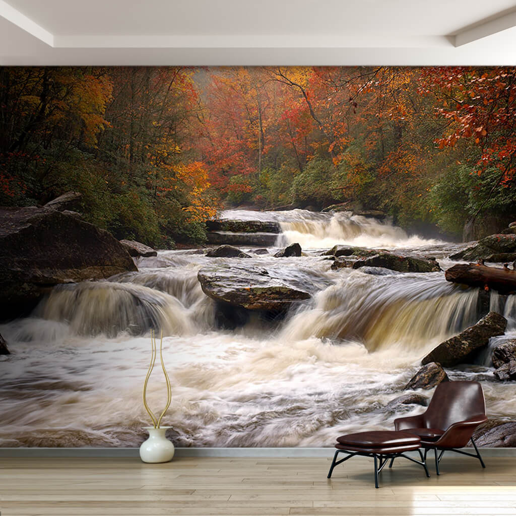 Autumn rain forest landscape and ebullient river wall mural