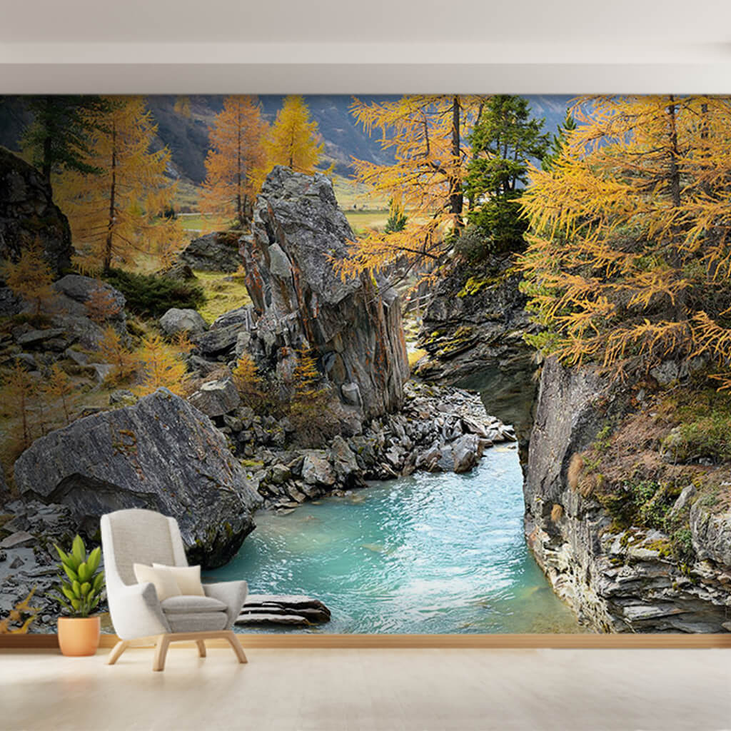 Autumn scenery with flowing stream in rocky valley wall mural