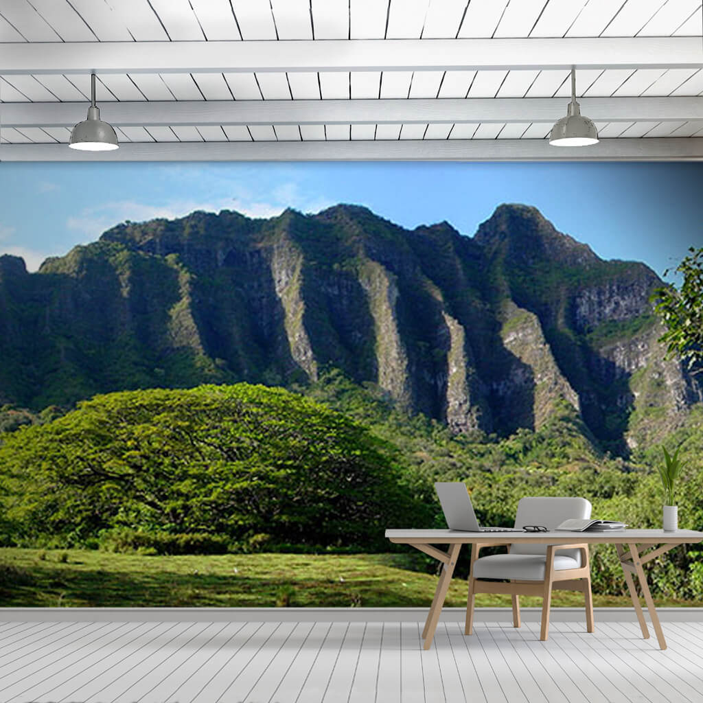 Panoramic Nature And Mountains Landscape Hawaii Wall Mural