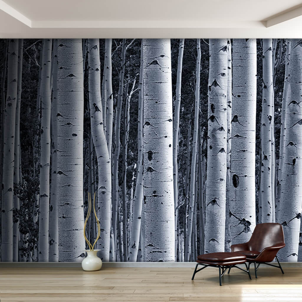 Black white birch trunks forest wood custom wall mural