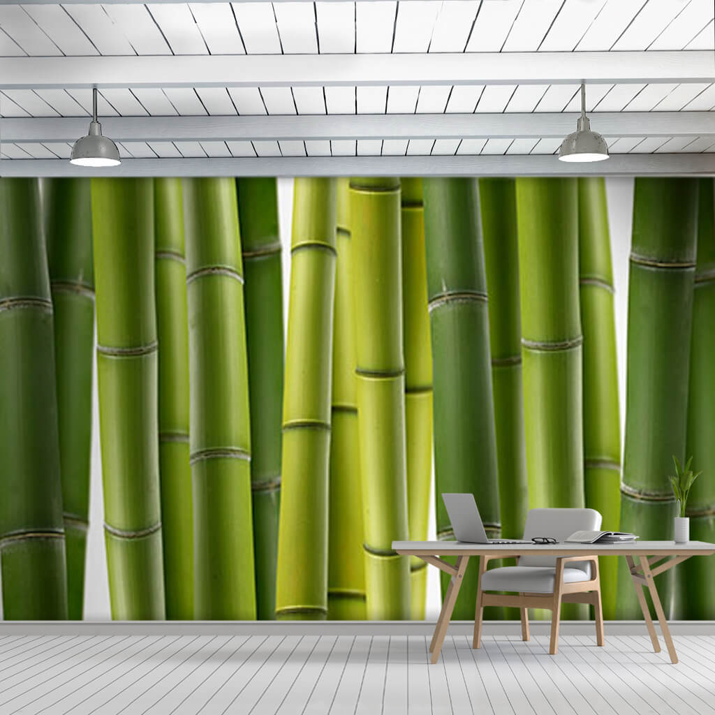 Green bamboo tree trunks wooden panoramic custom wall mural