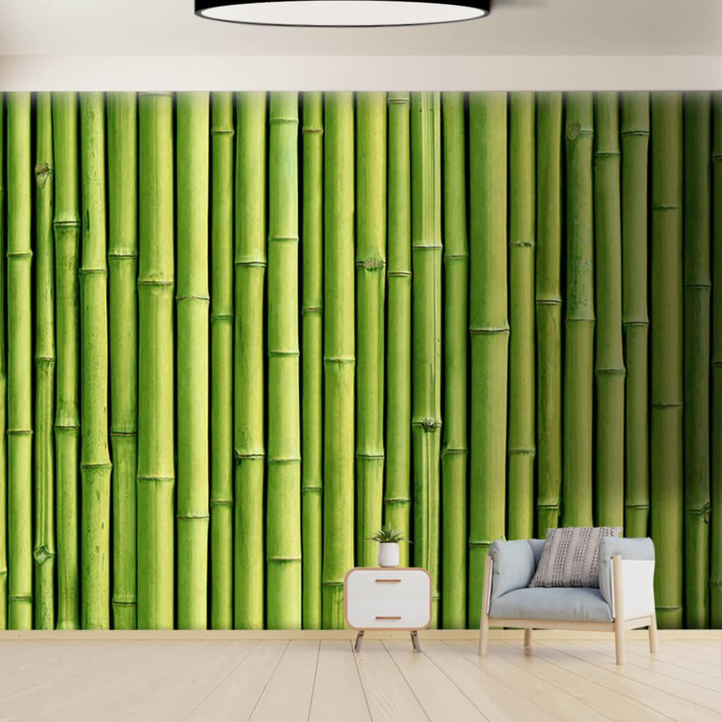 Dikey sıralanmış yeşil bambu gövdelerinden duvar kağıdı