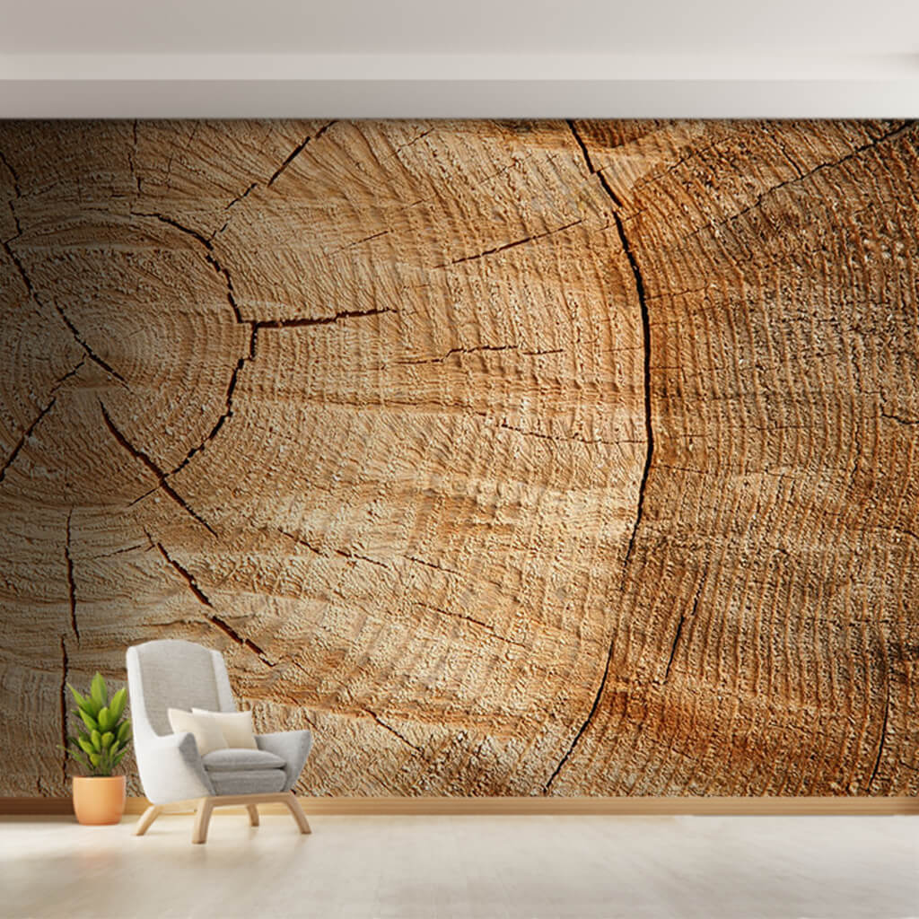 Cracked moose tree cross section wood pattern wall mural