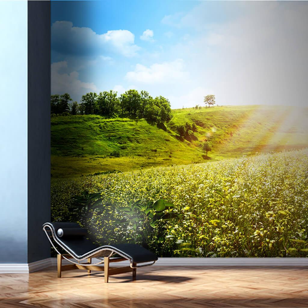 Baharda kır çiçekleriyle kaplı tepeler ve güneş duvar kağıdı