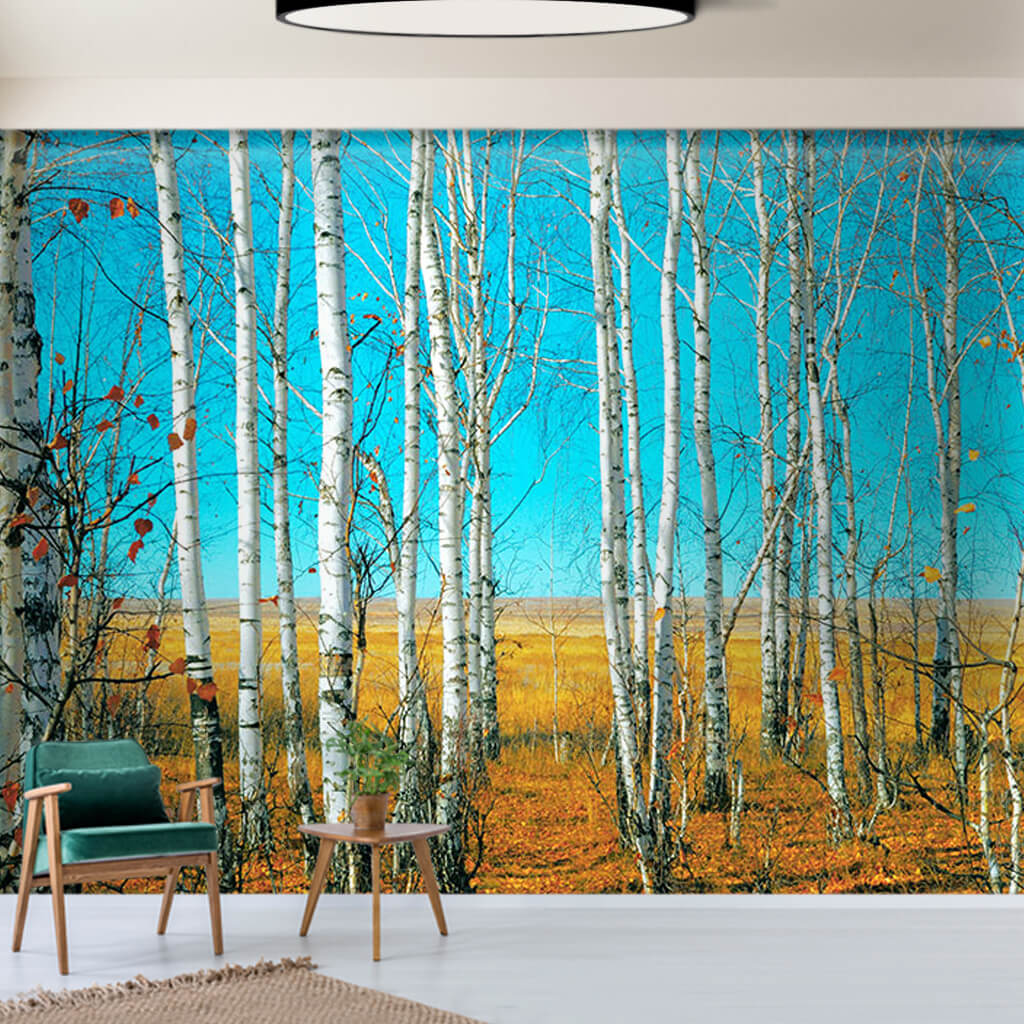 Autumn landscape from birch and poplar trees wall mural