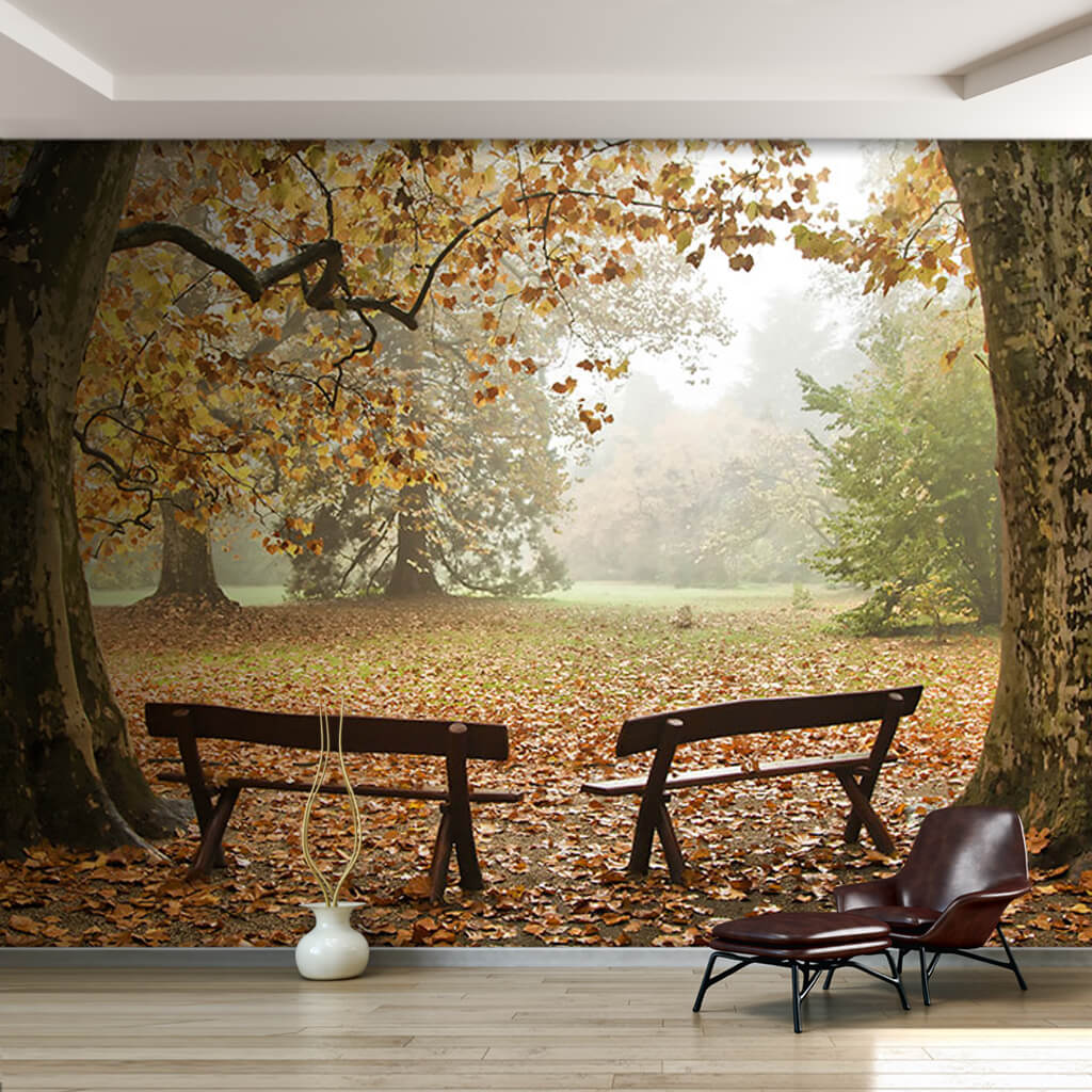2 benches among autumn trees nature landscape wall mural