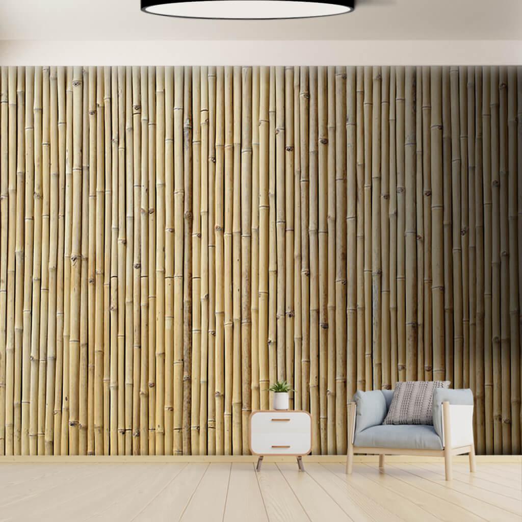 Dikey kuru bambu kamışlarından çit perde duvar kağıdı