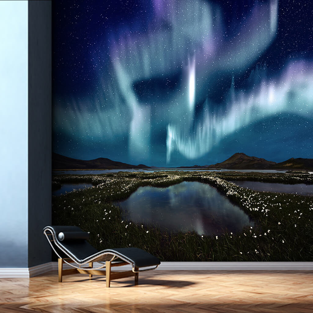 Aurora Borealis Northern Lights at night custom wall mural